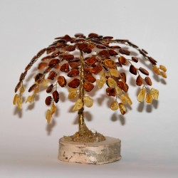 "Amber tree ""Willow"""